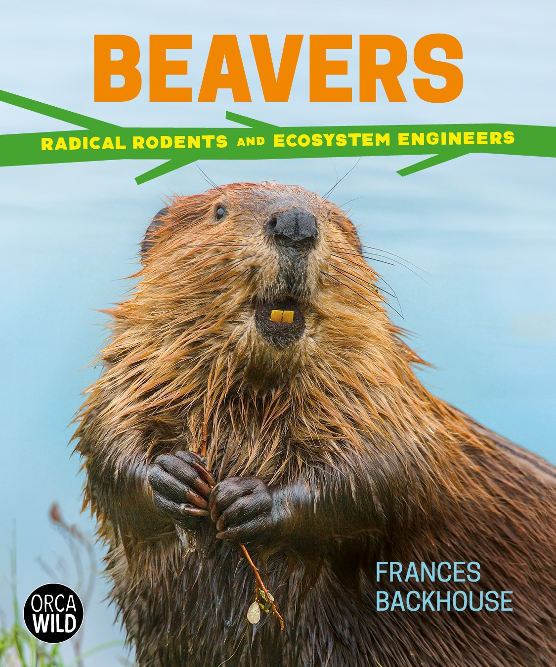 Beavers: Radical Rodents and Ecosystem Engineers